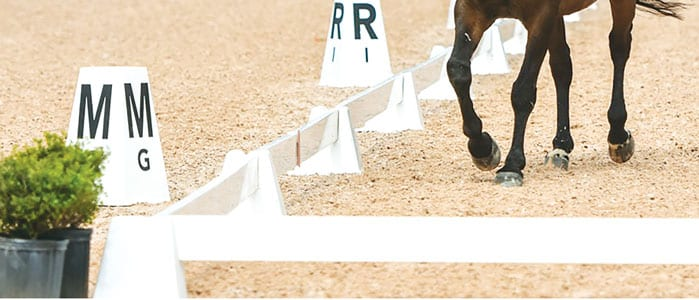 Dressage Sundance arena with Berkshrire Letters brown legs 300t