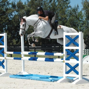 Blue White Liverpool Horse Jumps