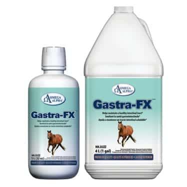 Omega Alpha bottle of Gastra-FX supplement